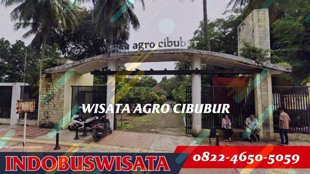 Destinasi Wisata Ke Cibubur Dengan Bus - Wisata Agro Cibubur - Indobuswisata