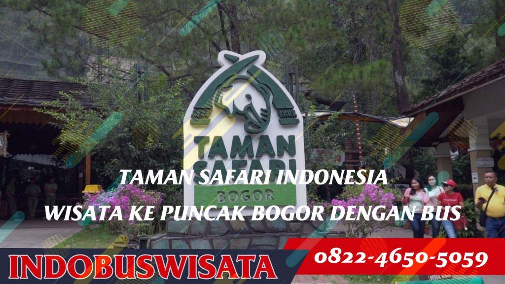 Destinasi Wisata Puncak Dengan Bus - Taman Safari Indonesia - Indobuswisata