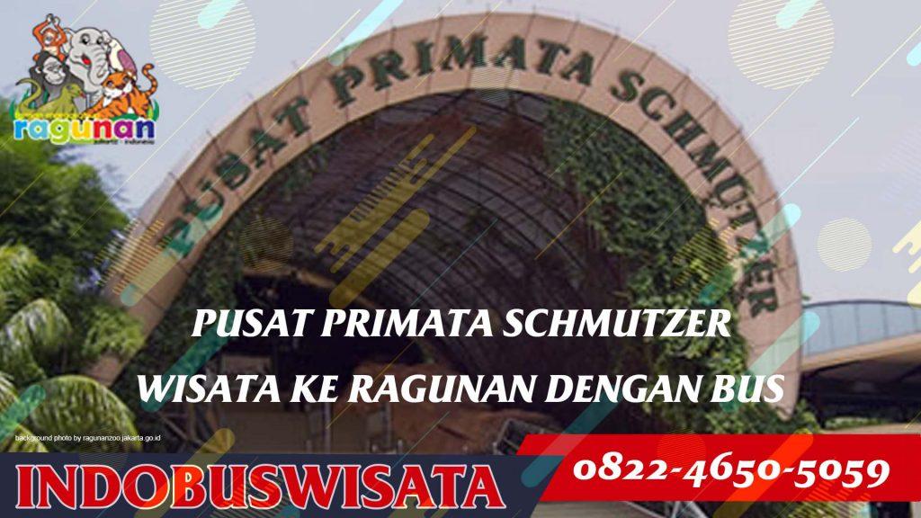 Fasilitas Wisata Di Ragunan Dengan Bus - Pusat Primata Schmutzer - Indobuswisata