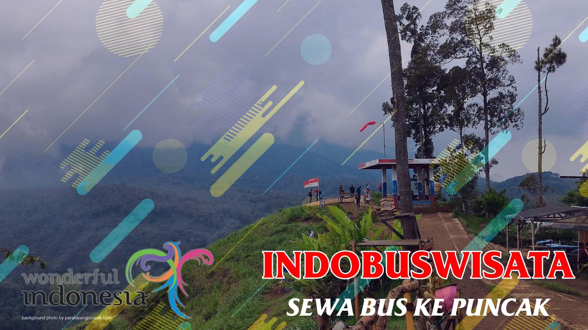 Sewa Bus Ke Puncak - Indobuswisata