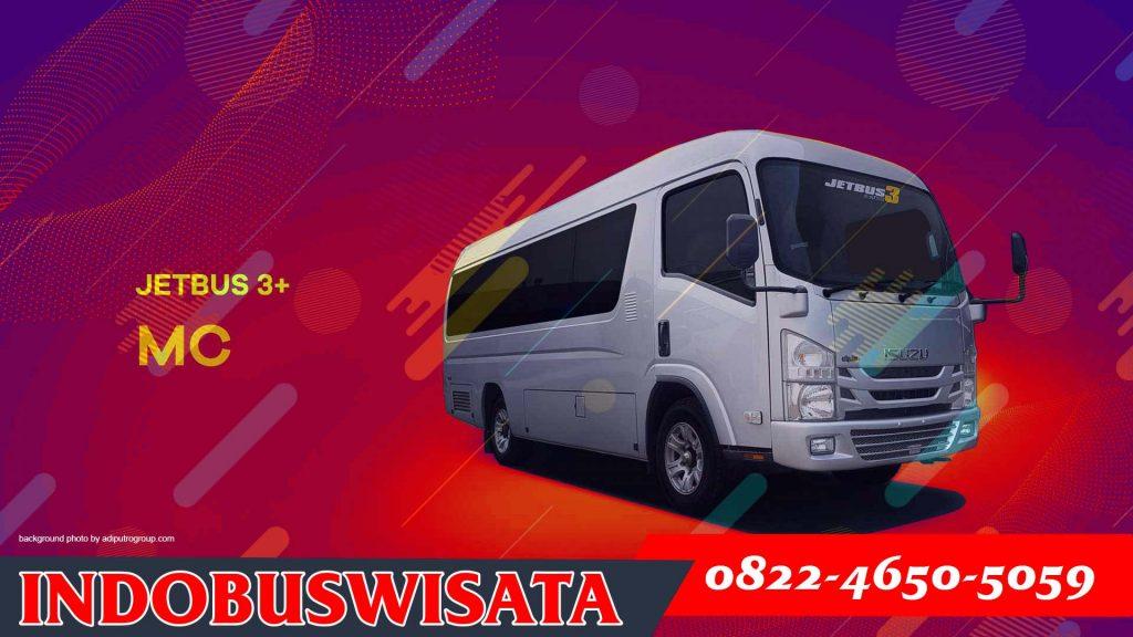 Elf Jetbus Adiputro Mc 01 - Sewa Elf Bekasi - Indobuswisata