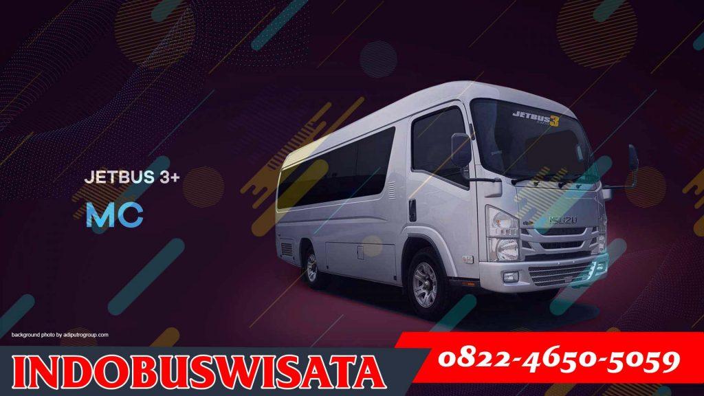 Elf Jetbus Adiputro Mc 01 - Sewa Elf Depok - Indobuswisata