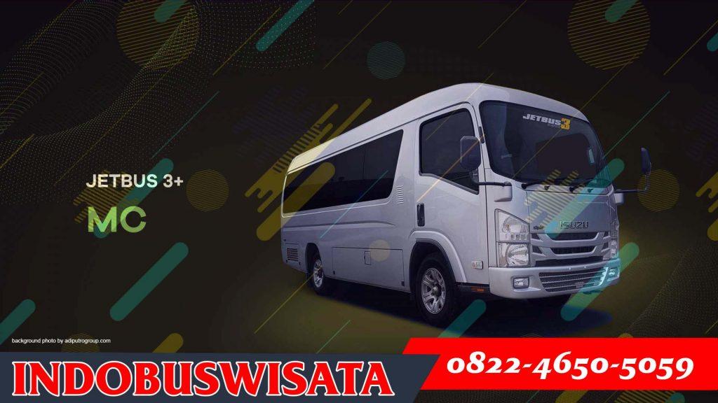 Elf Jetbus Adiputro Mc 01 - Sewa Elf Tangerang - Indobuswisata